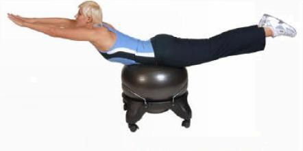 Swiss Ergonomic Balance Ball Chair