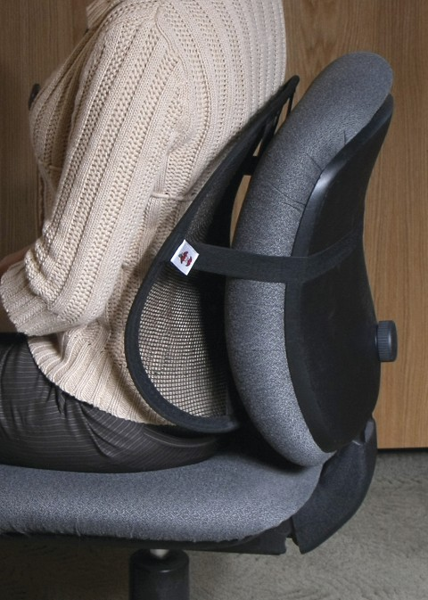 Mesh Sitback Rest Lumbar Support By Core Products