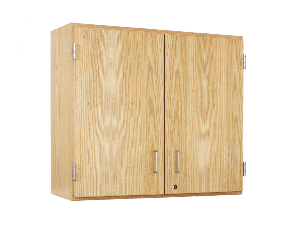 wooden wall cabinet with solid double doors. Black Bedroom Furniture Sets. Home Design Ideas