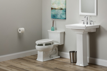 Open Wall Elevated Toilet Seat by BEMIS
