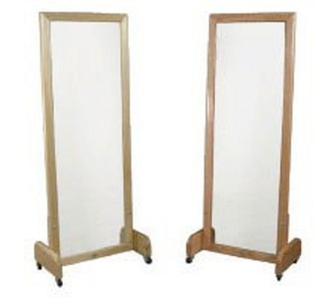 Dynatronics Floor Stand Posture Mirror