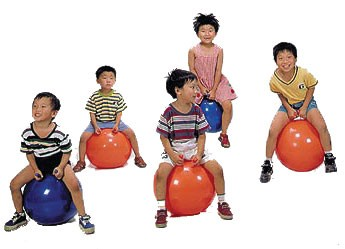 Therapy Balls Exercise Ball Yoga Ball Massage Ball