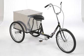 Transit easy rider - 2 2
