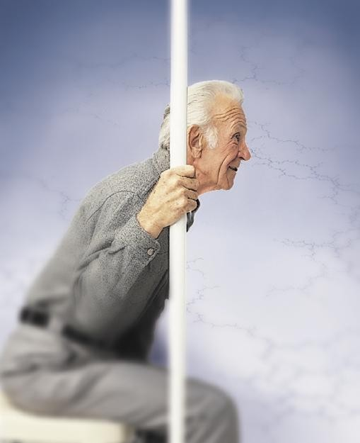 Guardian Safe T Pole Floor To Ceiling Sitting And Standing
