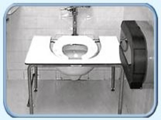 Standard Toilet Transfer Bench - FREE Shipping