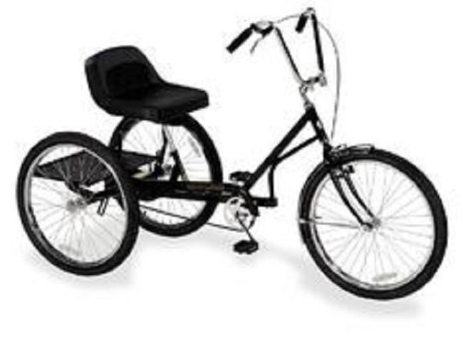 Trailmate Regal Hefty Hauler Adult Tricycle