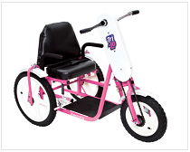 Buy Special Needs Tricycles Hand Cycles Recumbent Trikes