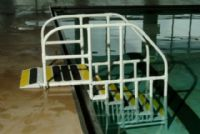 AquaTrek Pool Ladder
